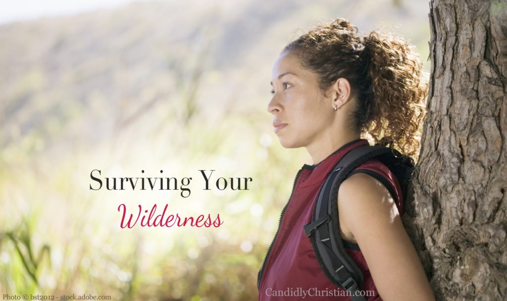 6 Keys You Need To Know For Surviving Your Wilderness
