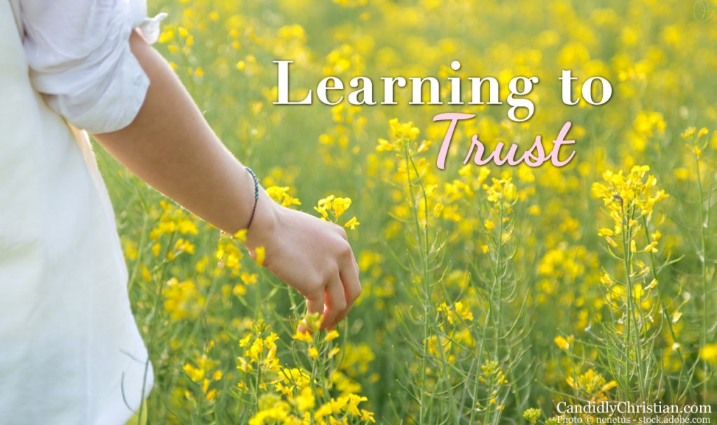 Shattering the Spectacular: Learning to Trust Little by Little