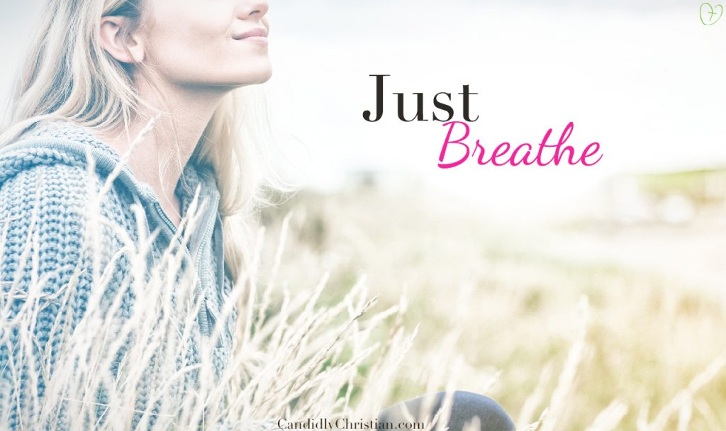 Do You Need to Take a Moment & Just Breathe?