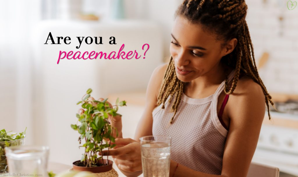 Are You a Peacemaker?