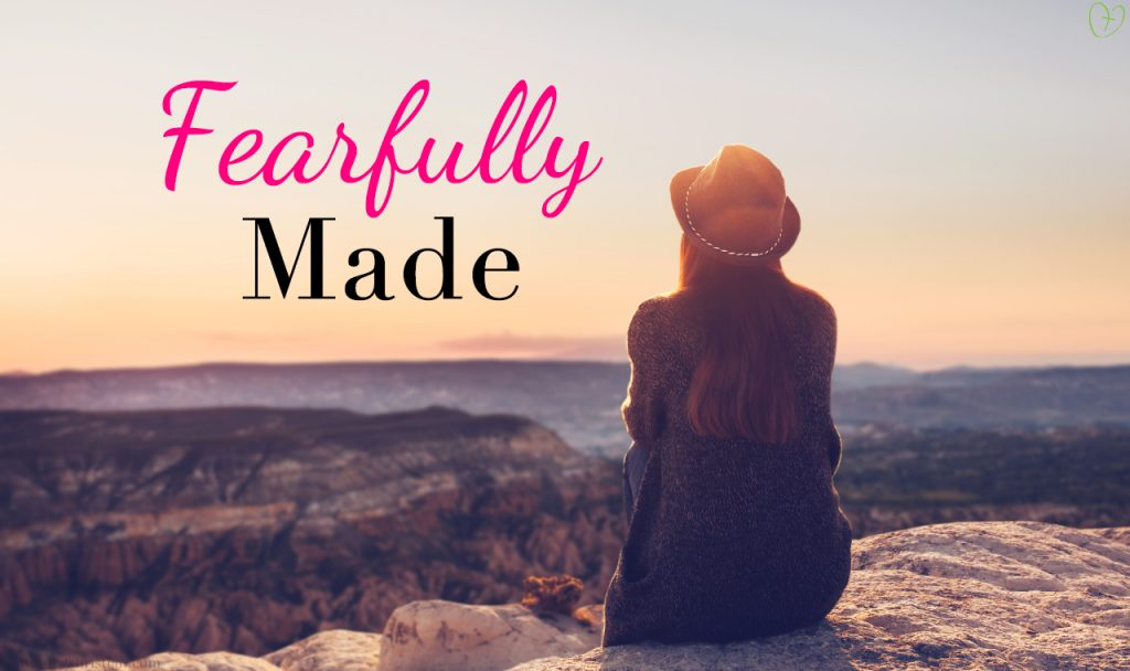 What It Means To Be Fearfully Made